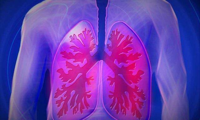 داروها بر بافت ریه اثر مخرب دارند